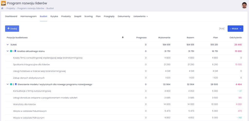 Widok ogólny budżetu - zarządzanie budżetem projektowym we FlexiProject - blog o zarządzaniu