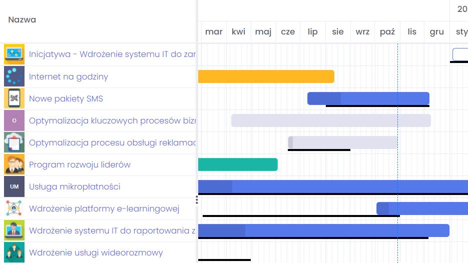 Grupowanie projektów w portfele projektowe FlexiProject